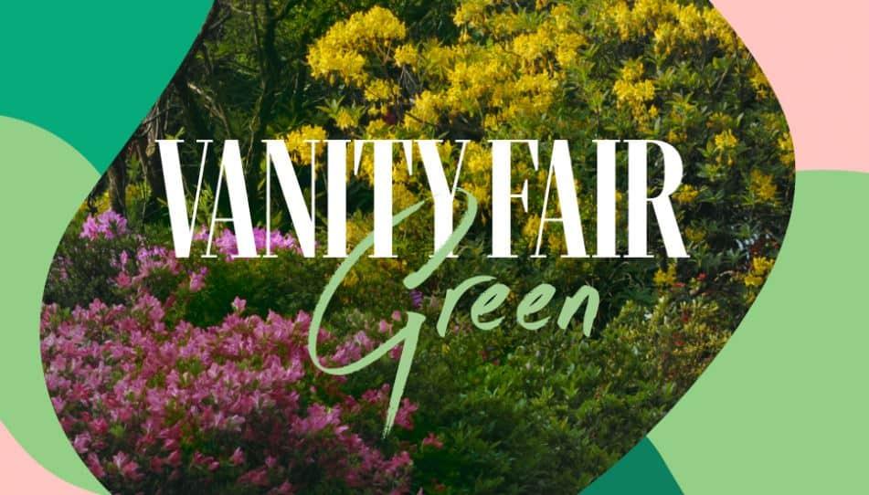 Vanity Fair Green
